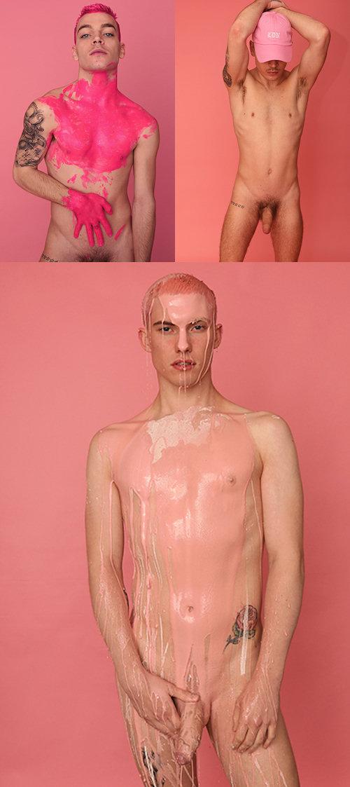 pink0926a.jpg